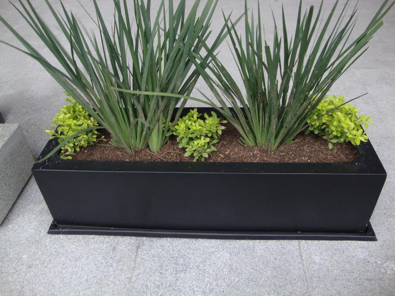 -Fibra de vidrio - Jardin- Viverdi México Jardinería y Fumigación - viverdimexico.com